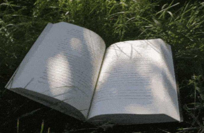 20 Favorite Reading Spots