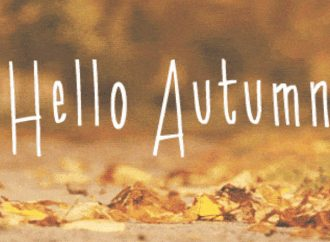 10 Reasons Why Fall Is The Best Season To Read