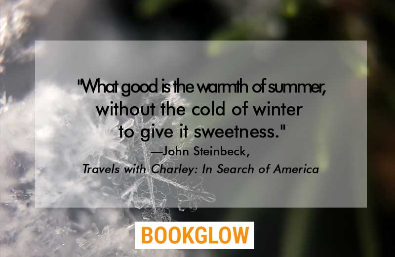 14 Of The Best Literary Quotes About Winter | BOOKGLOW
