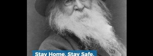 Stay Home, Stay Safe, Read Walt Whitman
