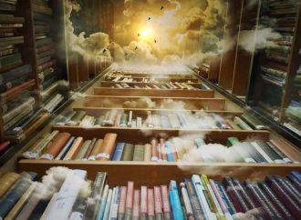 Bookshelf Problems Only Book Lovers Understand